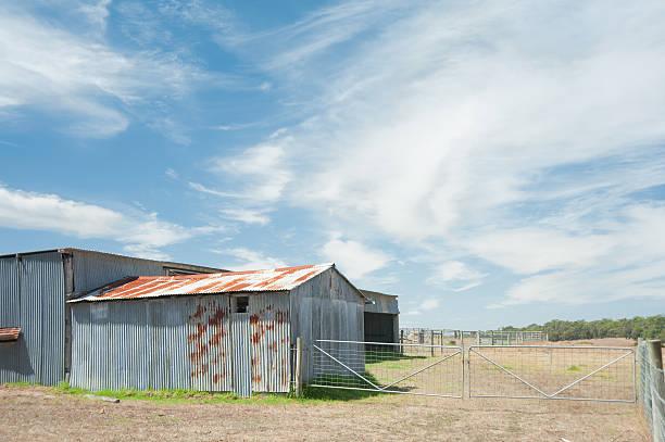 weist auf der farm - rustikaler hinterhof stock-fotos und bilder