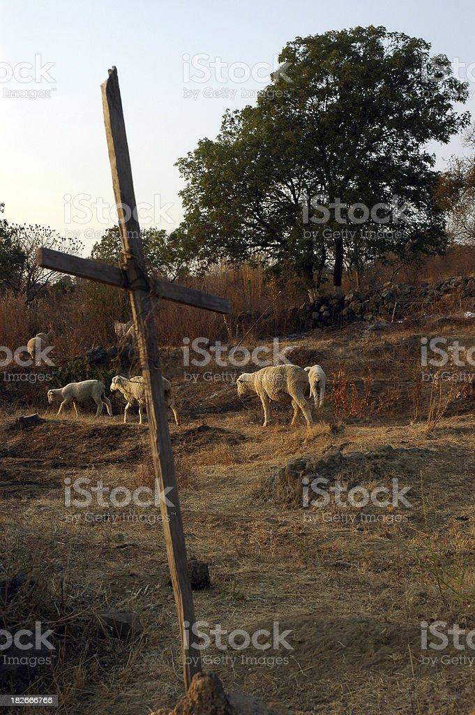 Sheep and Cross stock photo