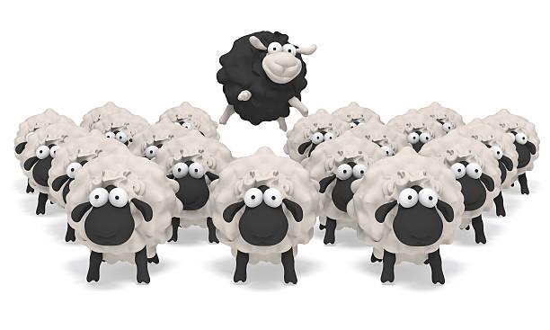 sheep black 3D illustration stock photo