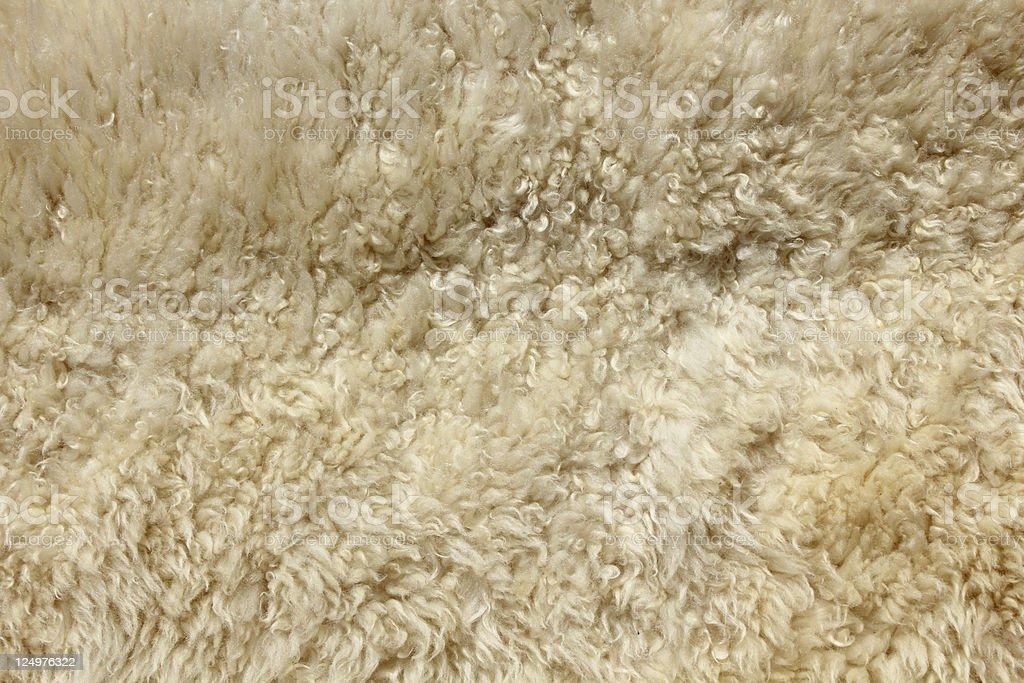 Fondo de piel de oveja - foto de stock