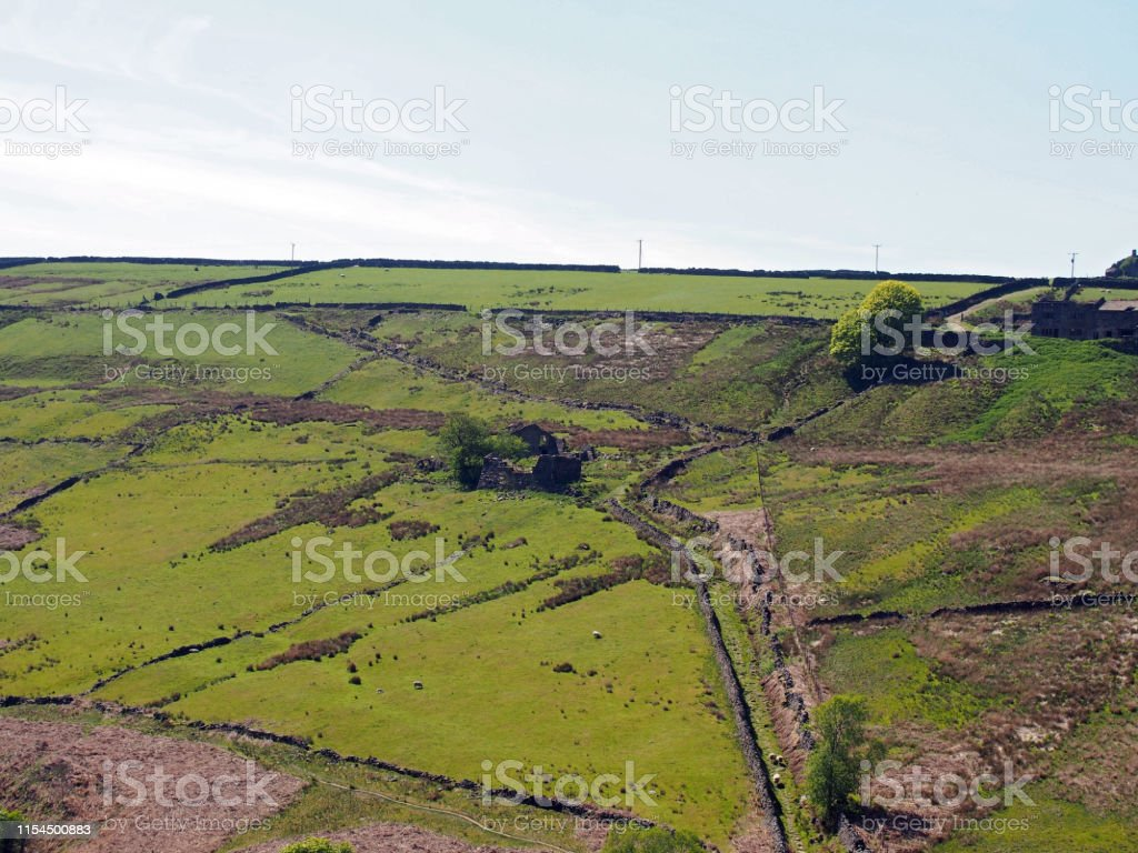 Sheep Grazing In Fields And Old Abandoned Farm Houses