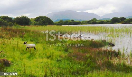 near Cornamona, Connemara, county Galway, Ireland, pictural effect