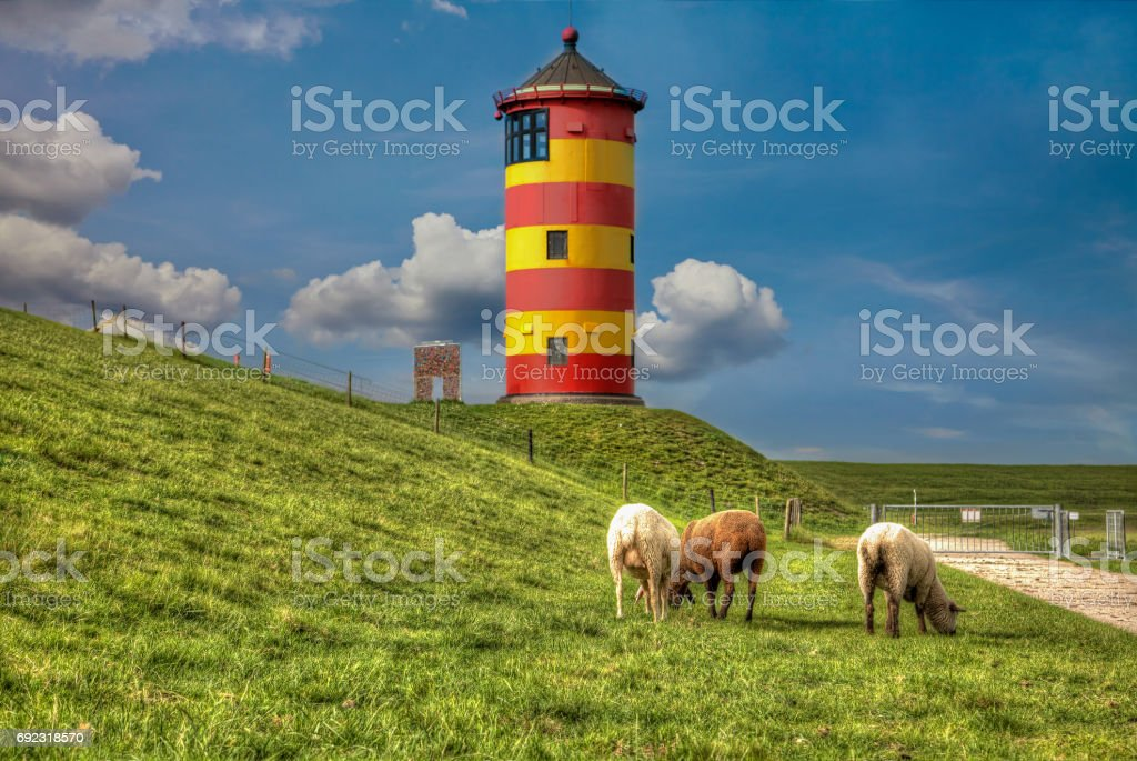 Sheep in front of the Pilsum lighthouse on the North Sea coast of Germany. stock photo