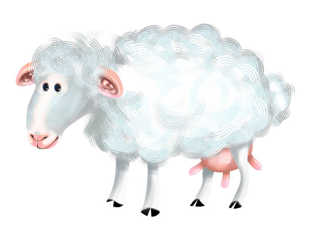 Sheep picture id1180039901?b=1&k=6&m=1180039901&s=612x612&w=0&h=zy3ardvbuxwd1ehvarnfsnzgryvpze9dhgvlvjoxg7q=