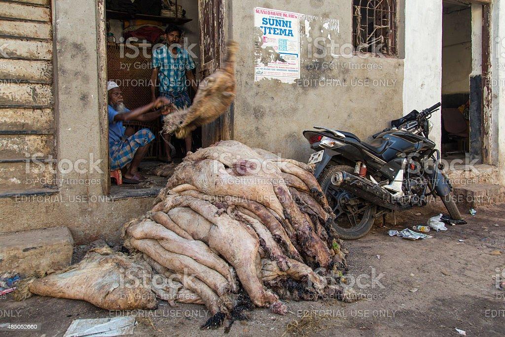 Sheep skin in Mumbai stock photo