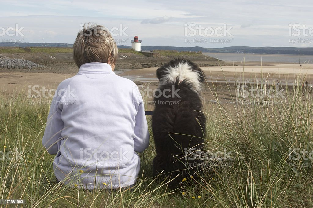 Sheepdog cross at the beach with owner left royalty-free stock photo
