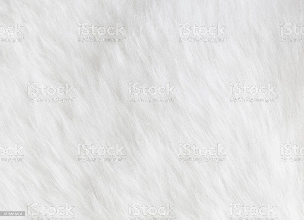 Fond de peau de mouton photo libre de droits