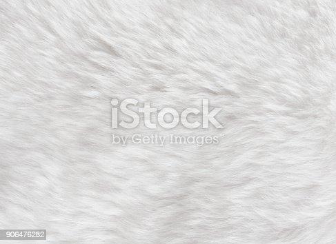 White sheepskin fur background