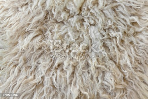 Close up of sheepskin background