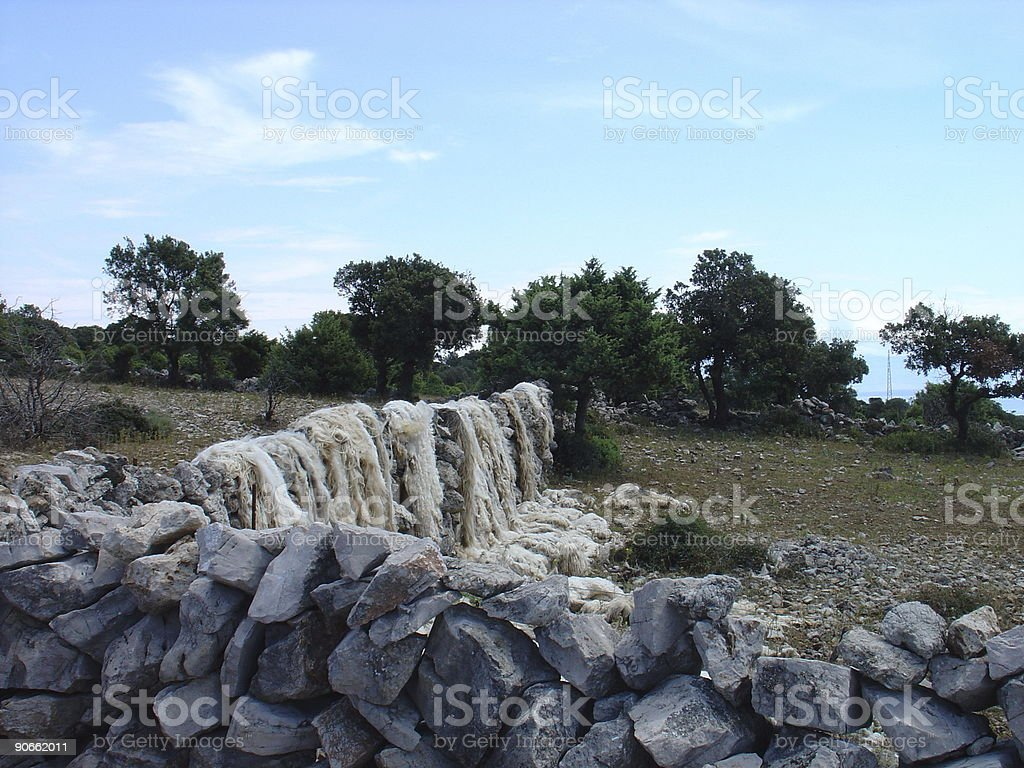 Sheepskins royalty-free stock photo