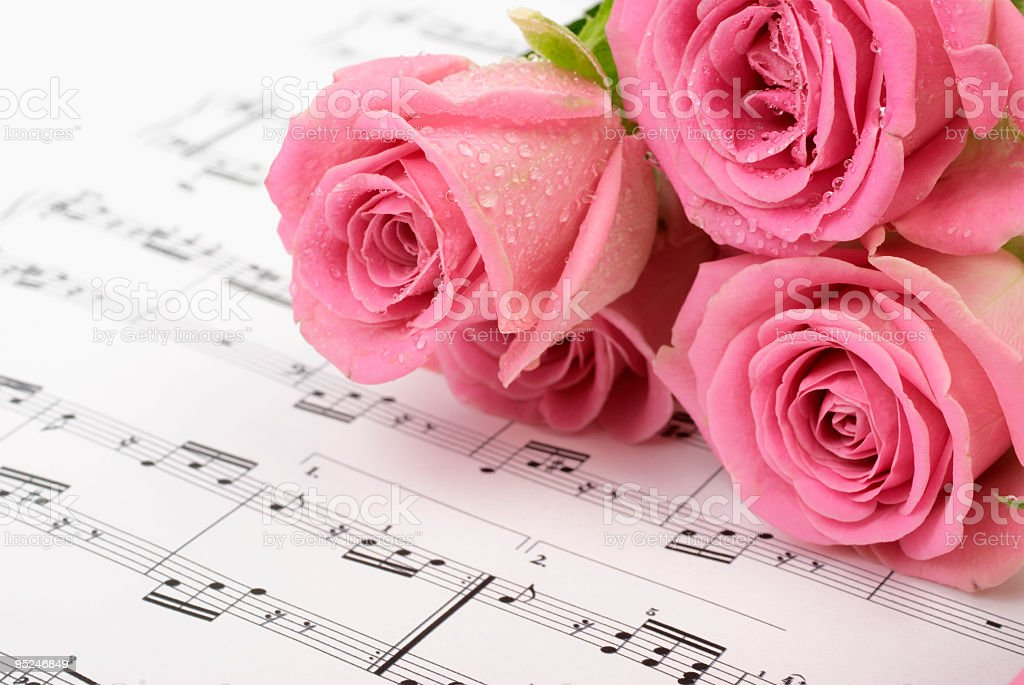 Sheet music with pink rose royalty-free stock photo