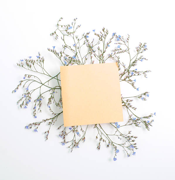 Top Paper Crown Template Stock Photos Pictures And Images Istock