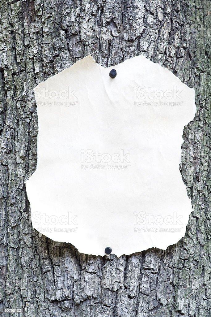 Blatt Papier – Foto