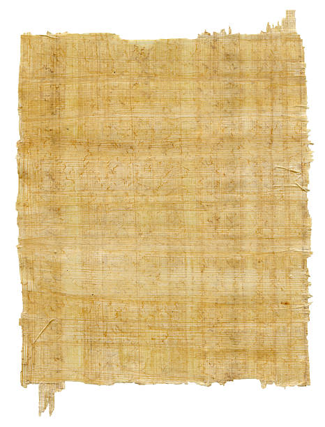 Sheet Of Papyrus -XXXL Sheet of ancient paper on a white background papyrus paper stock pictures, royalty-free photos & images