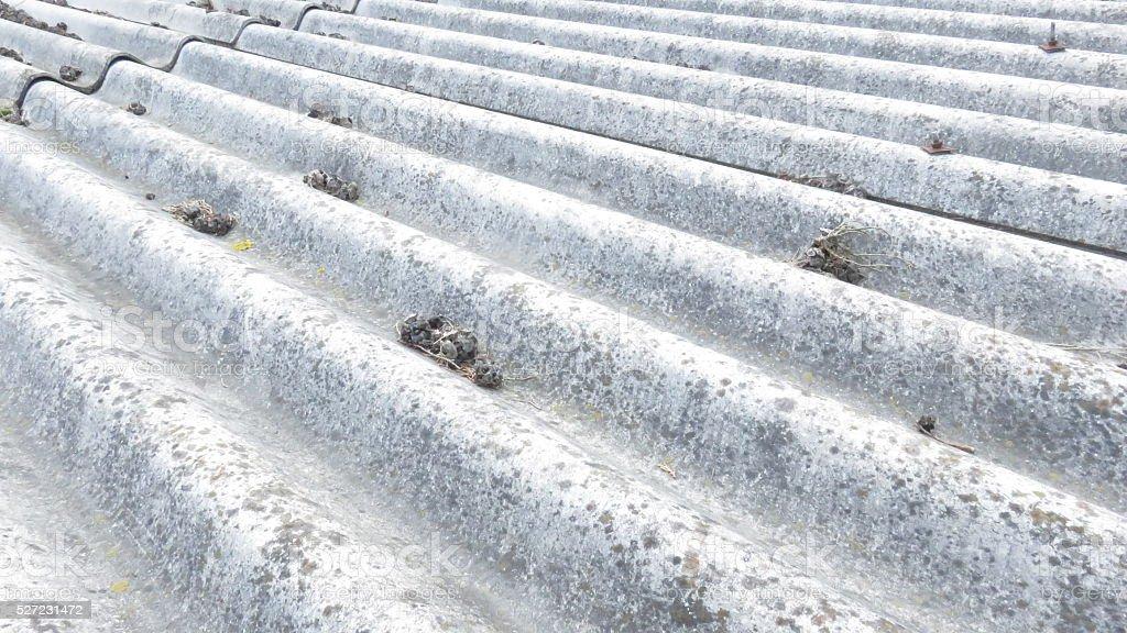 Folhas de amianto cimento na cidade centro