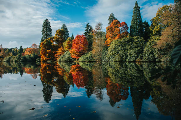 sheffield park, sussex - east sussex stockfoto's en -beelden