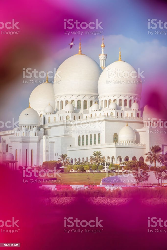 Sheikh Zayed Grand Mosque with flowers in Abu-Dhabi, United Arab Emirates stock photo