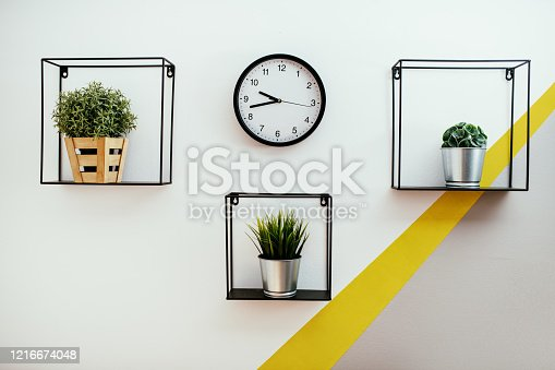 Designer details and house plants on the wall