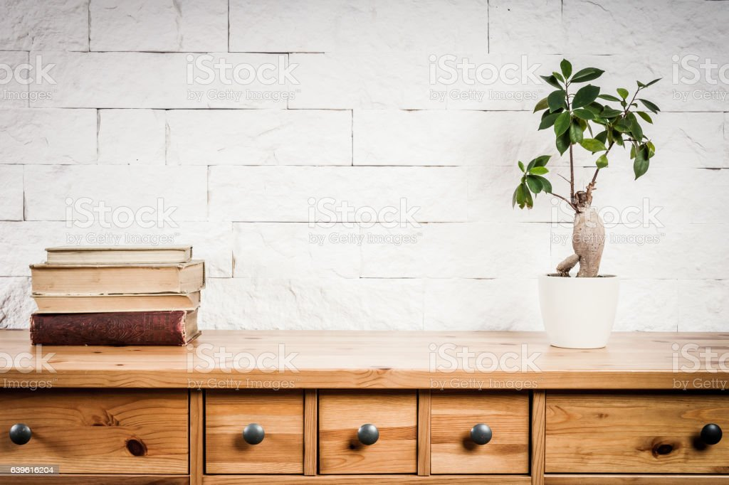 shelf with books and flower and white wall stock photo
