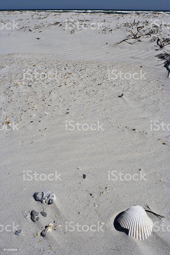 Shell Beach royalty-free stock photo