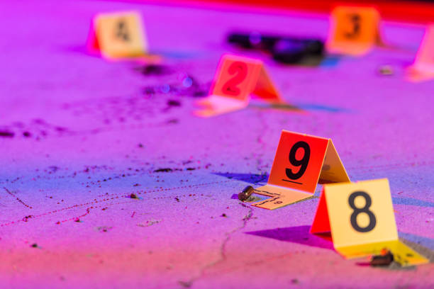 Shell Casing Evidence A shell casing is marked with an evidence marker within a crime scene. crime stock pictures, royalty-free photos & images