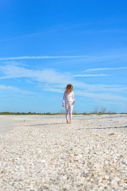 shell hunter at the seashore - little girl picking up sea shells at the beach stock pictures, royalty-free photos & images