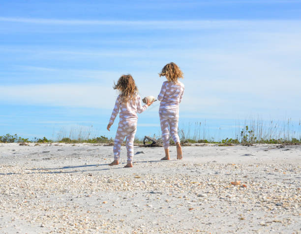 shell hunters at the seashore - little girl picking up sea shells at the beach stock pictures, royalty-free photos & images