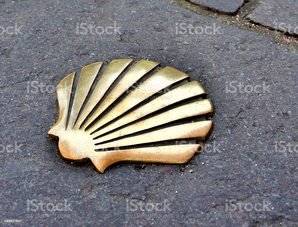 Shell in the Way of St James stock photo