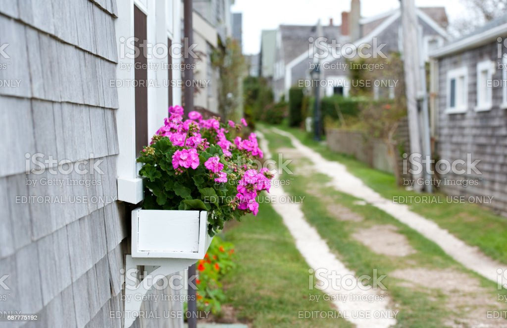 A shell road with cottages and a flower box stock photo