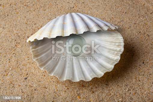 istock Shell with a Glass Pearl 1300157896