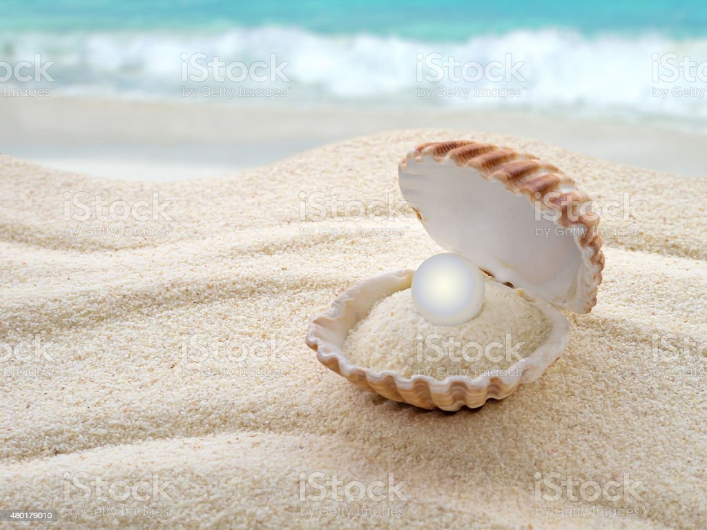 Shell with a pearl on the beach stock photo