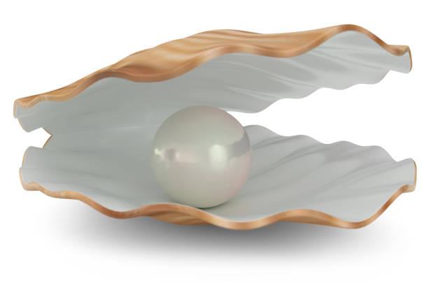 shell with pearl inside. natural open pearl shell. 3d illustration - mięczak zdjęcia i obrazy z banku zdjęć
