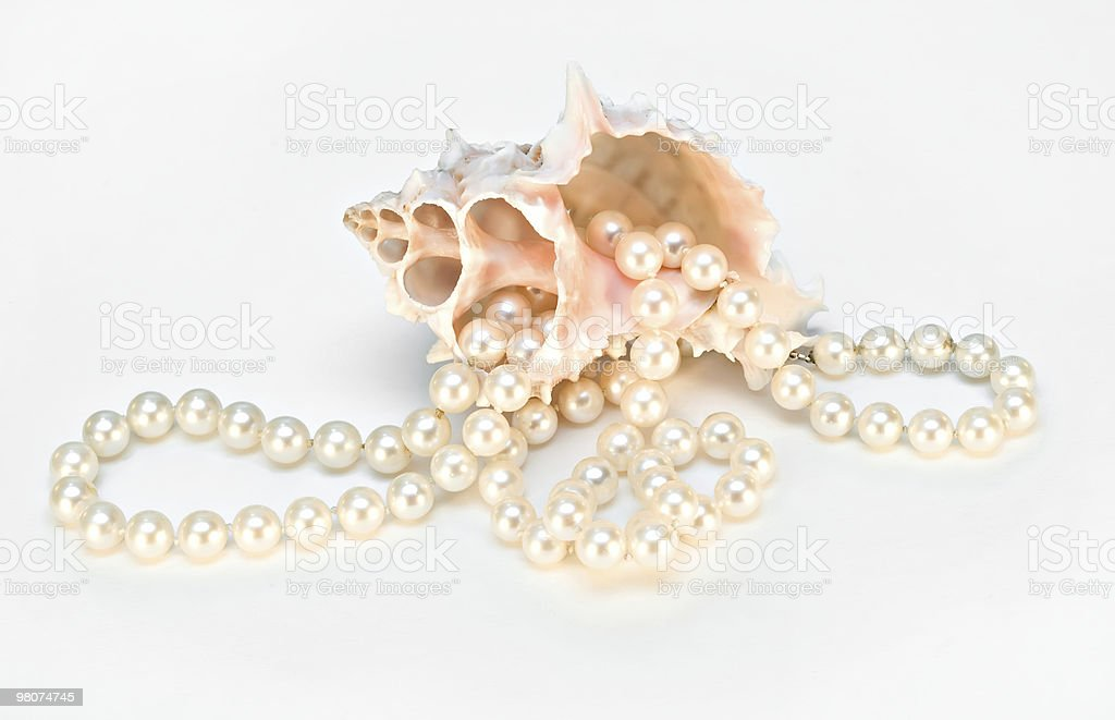 Shell with pearl necklace royalty-free stock photo