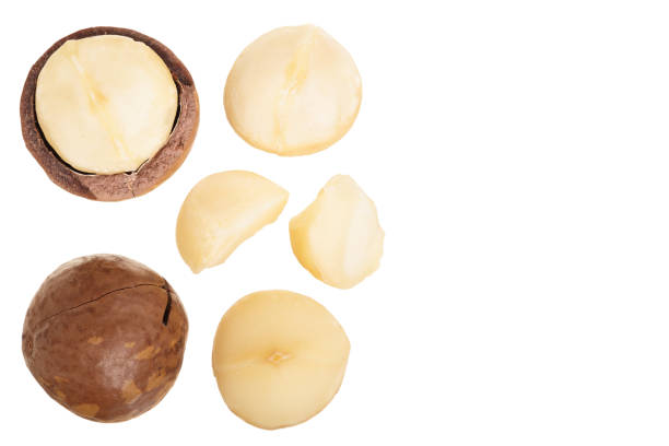 Shelled and unshelled macadamia nuts isolated on white background with copy space for your text. Top view. Flat lay pattern Shelled and unshelled macadamia nuts isolated on white background with copy space for your text. Top view. Flat lay pattern. macadamia nut stock pictures, royalty-free photos & images