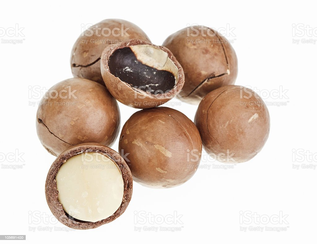 Shelled and unshelled macadamia nuts isolated on white royalty-free stock photo