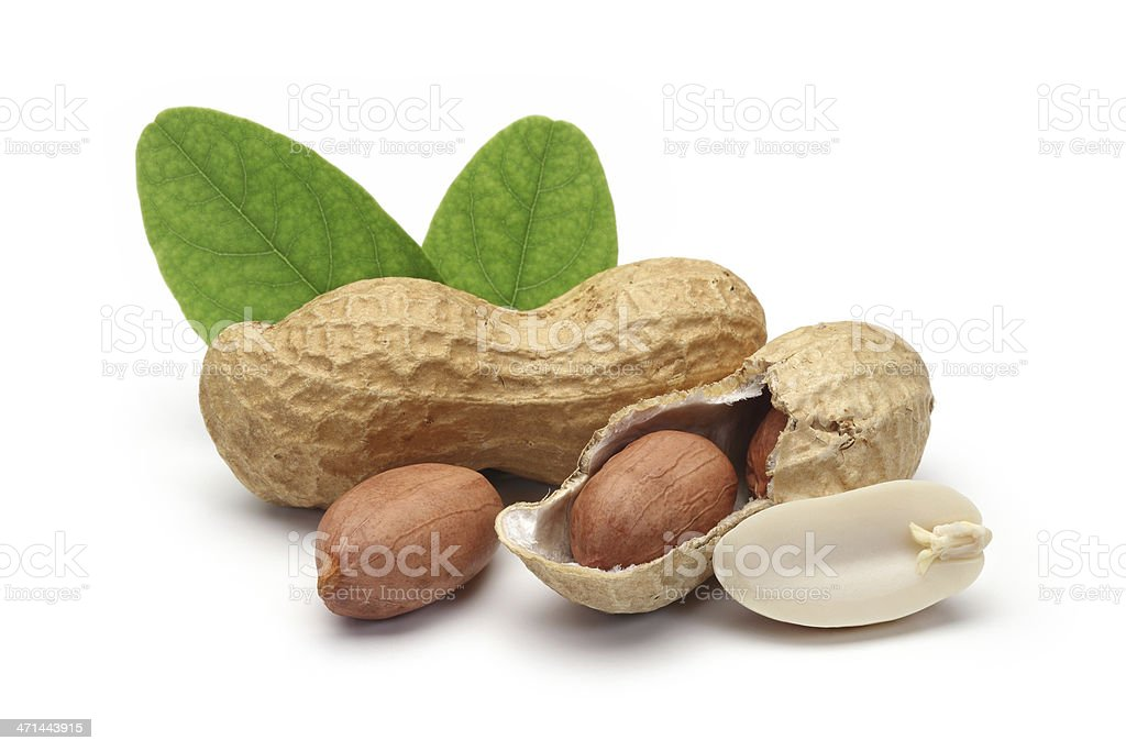 shelled peanuts and leaves royalty-free stock photo