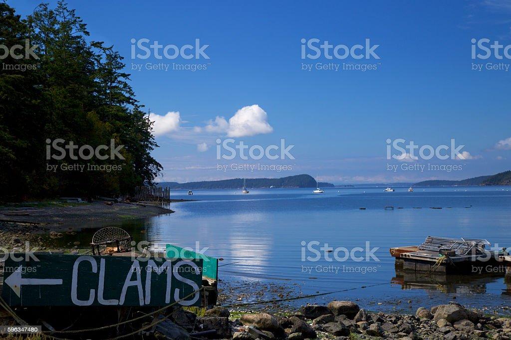 shellfish farming in San Juan Islands stock photo