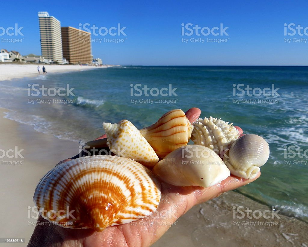 Shelling Keepers March 7 2015 stock photo