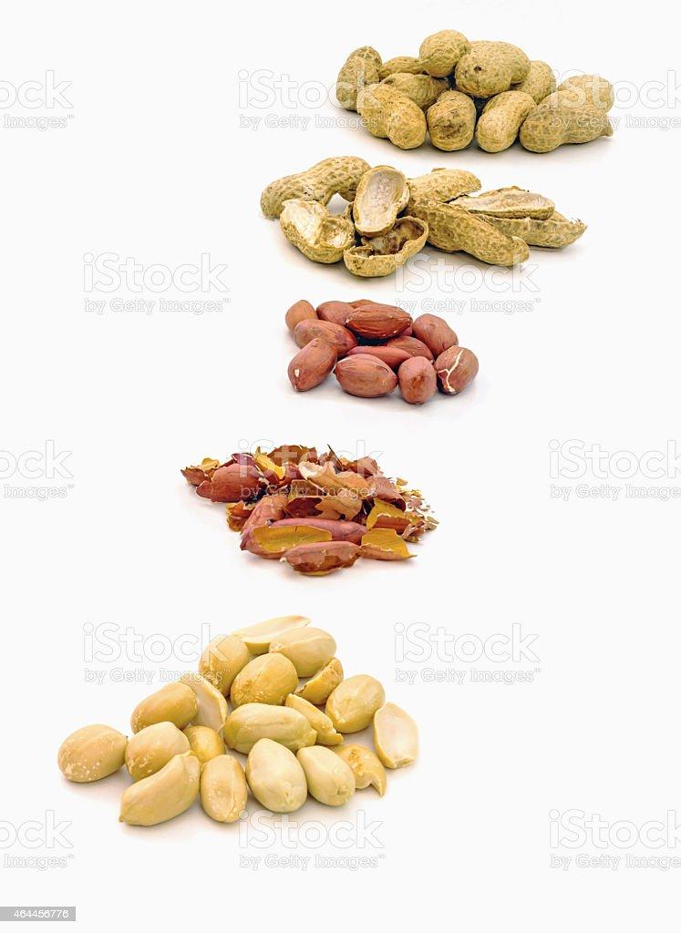 Shelling raw peanuts stock photo