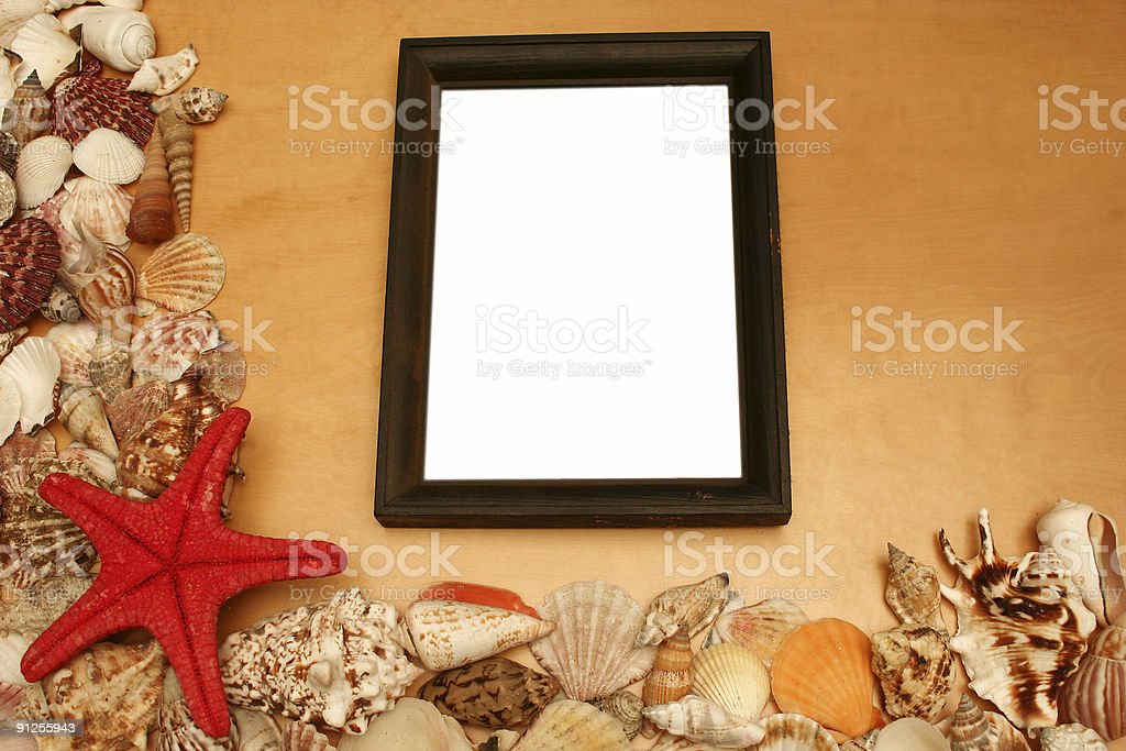 Shells and a blank frame royalty-free stock photo