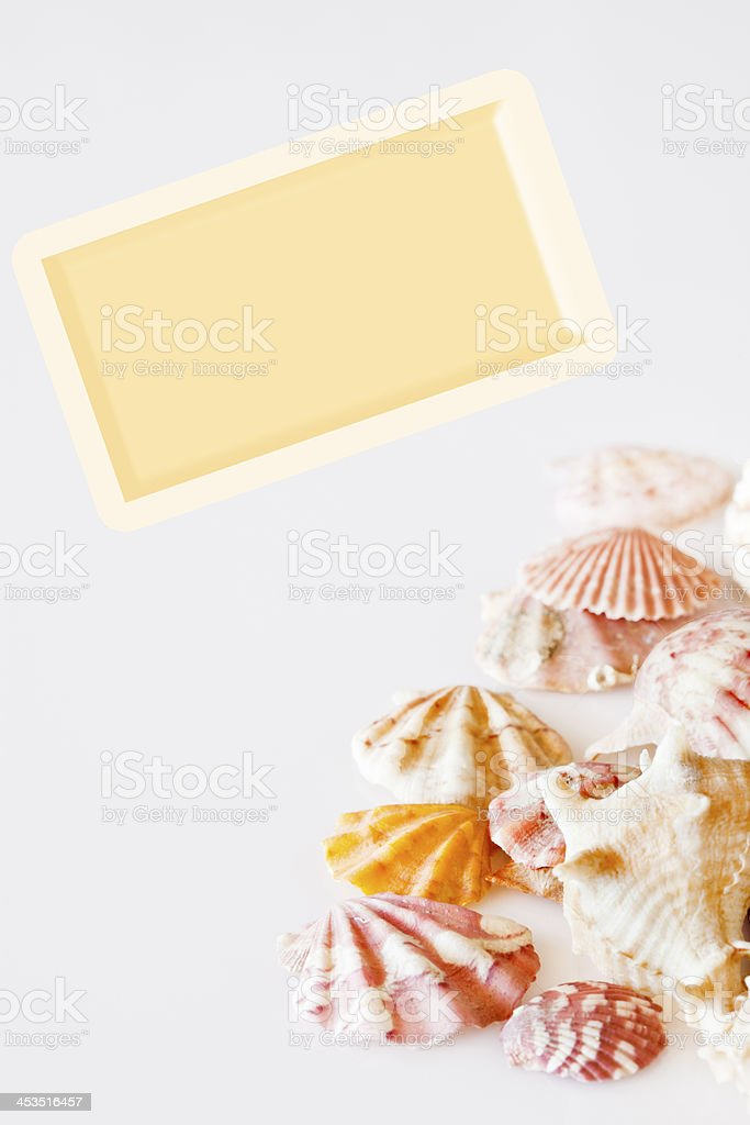 Shells and card. royalty-free stock photo