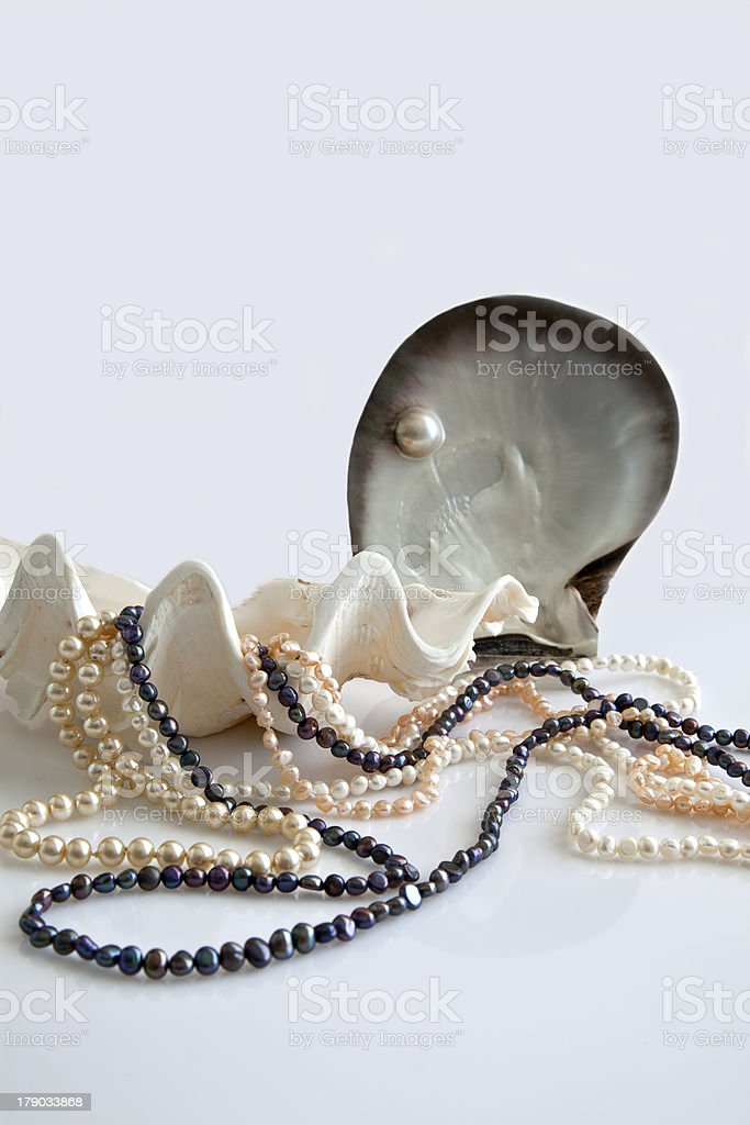 Shells and pearls. royalty-free stock photo