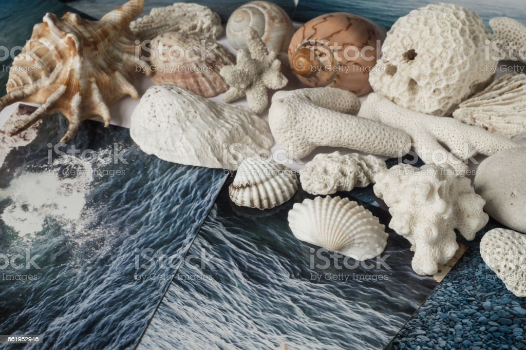 Shells and pictures with the image of the sea royalty-free stock photo