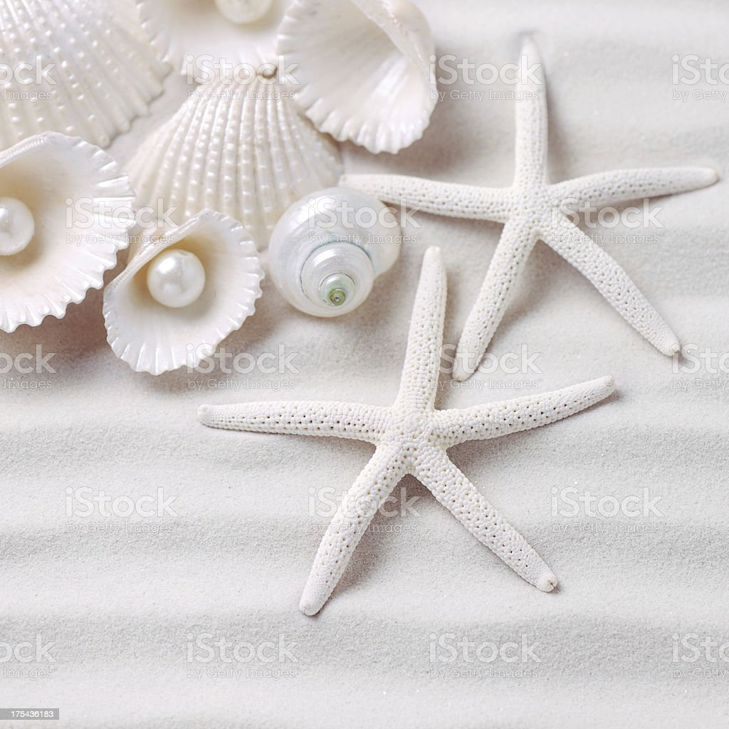 Shells and Sea Stars with pearls stock photo
