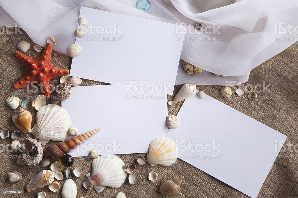 Conchas e estrelas do mar com livros brancos - foto de acervo