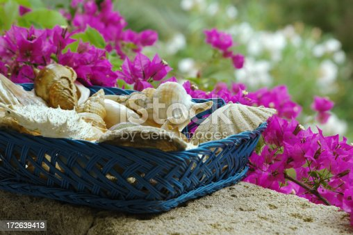 a blue basket full of shells with pink bouganville