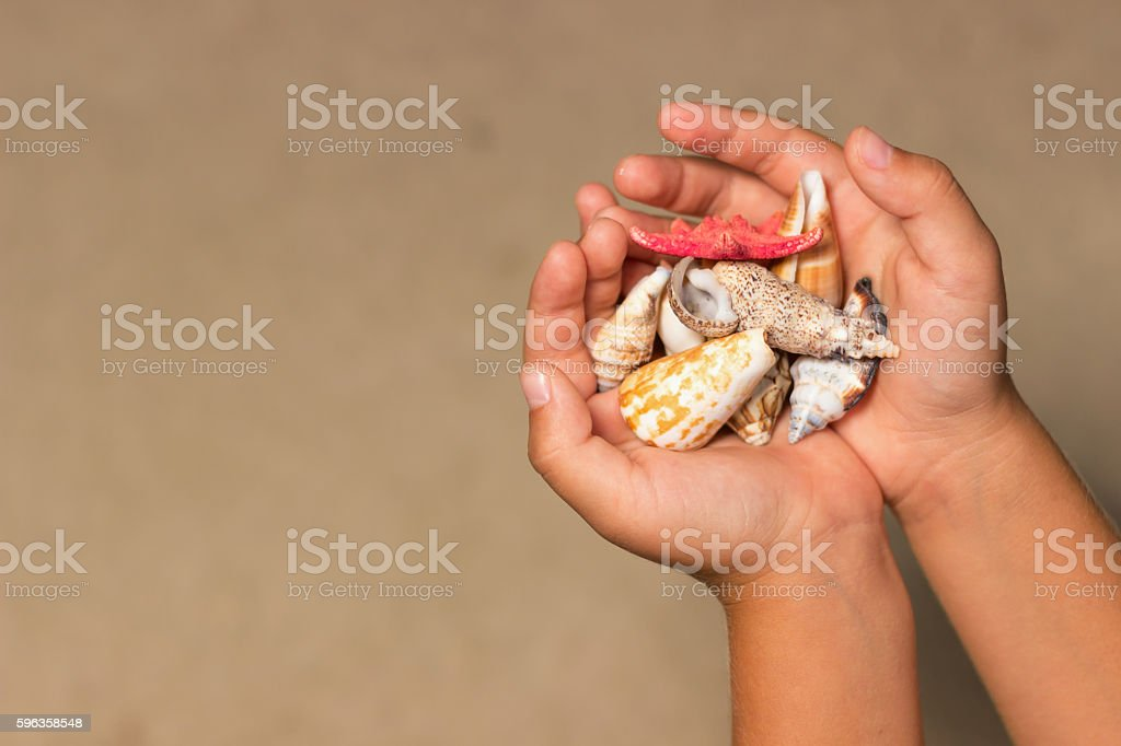 Shells in the hands of a child. Summer background, – Foto