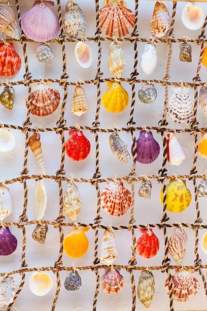 shells on a net decoration. greece. - pink and orange seashell background stockfoto's en -beelden