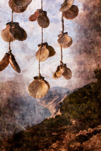 muscheln mit wunderschönen küste hintergrund - lefkada insel in griechenland - bemalte muscheln stock-fotos und bilder