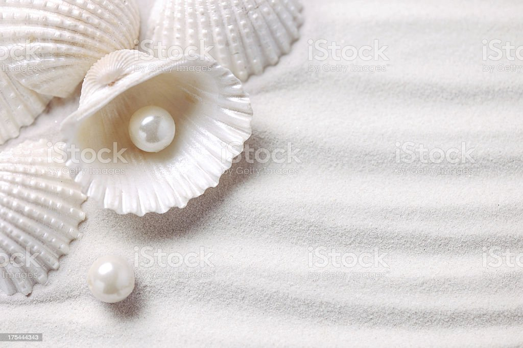 Shells with pearls stock photo